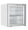 Шкаф морозильный Tefcold UF100G-P